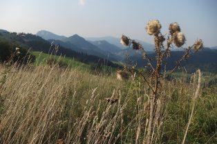 Kilátás az Erdősi-hágóból