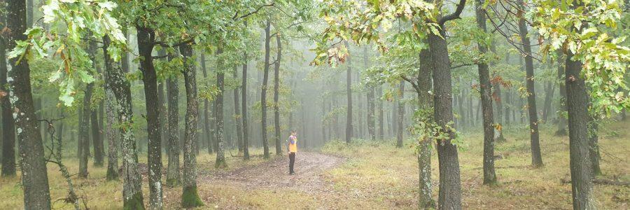 Őszi Hazajáró túrahétvége – esőben és sárban
