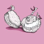 Pink Birds and Scone