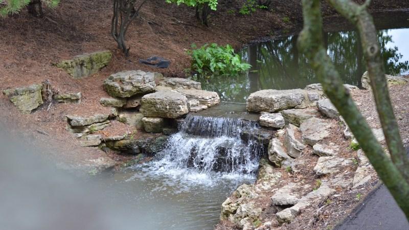 New Hiking Adventure: Vernon Hills Memorial Arbortheater