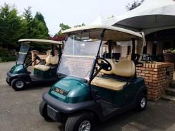 Hazelmere Golf Cart