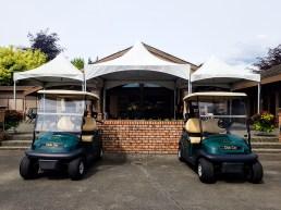 Golf Carts (2)