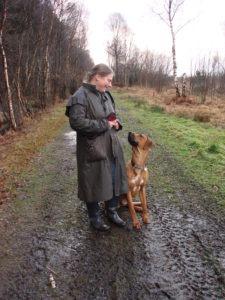 Hazel Shimmin: Dog Trainer and Behaviour Advisor