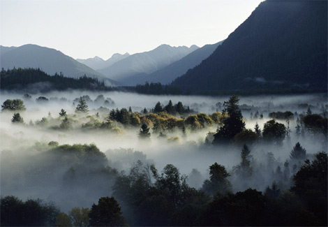 valley-fog-670311-ga