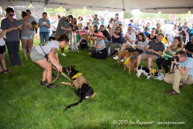 Monmouth County SPCA Dog Walk Cutest Tricks Contest