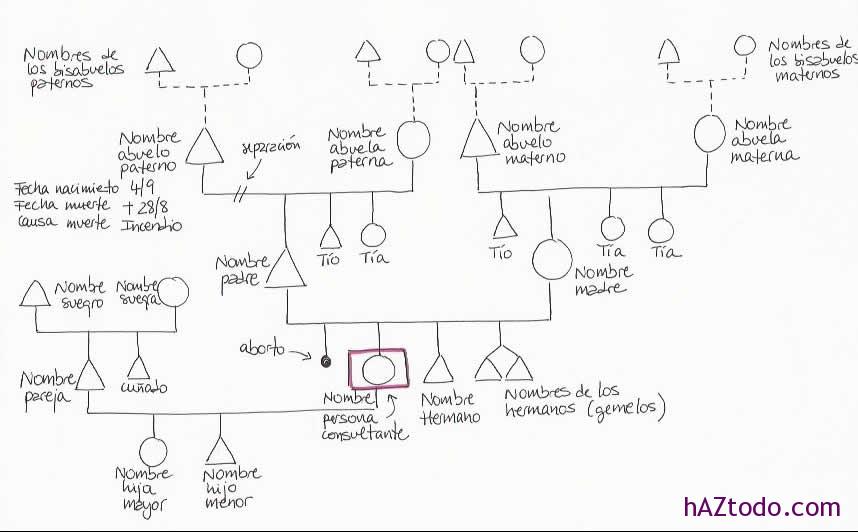 Cómo dibujar un árbol genealógico