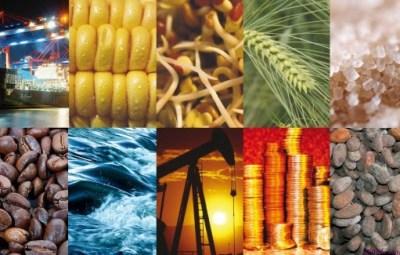 Qué son los Commodities?