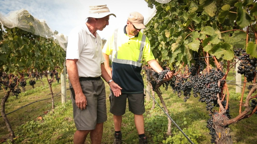 Growers Employment Expo in Hawke's Bay