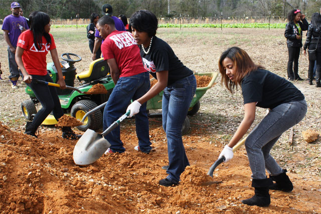 National-Day-of-Service-MLK-Day-Project-Ideas-For-College-Students