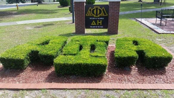 SSU Alpha Plot on the yard