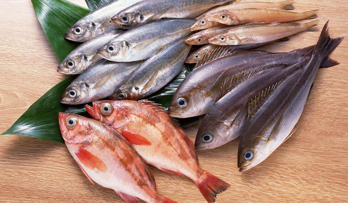 تفسير حلم اكل السمك المشوى اسود فى الحلم ابيض فى الحقيقة