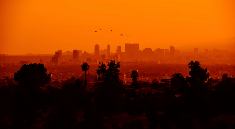 A photo of the city of Los Angeles during sunset from a far view. The sky is very orange. The view of high-rise buildings is slightly obscured by smog and polluted air.