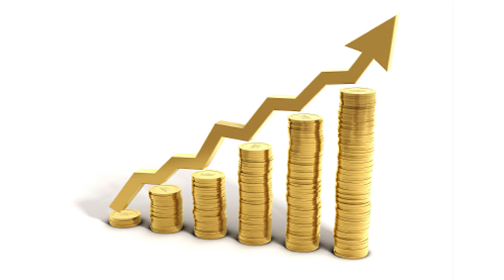 GROWING YOUR FINANCIAL CAPACITY