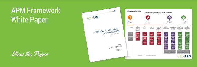 APM Framework White Paper banner