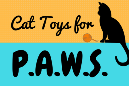 Cat Toys for P.A.W.S.