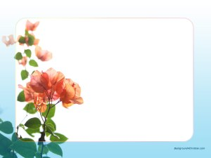 Flower Wallpaper Border Get