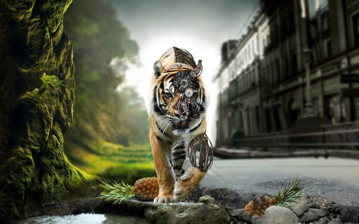 Nature background picture tiger