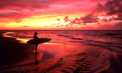 tropical beach sunset wallpaper