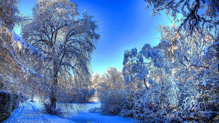 HD Winter wallpaper Desktop 1280p