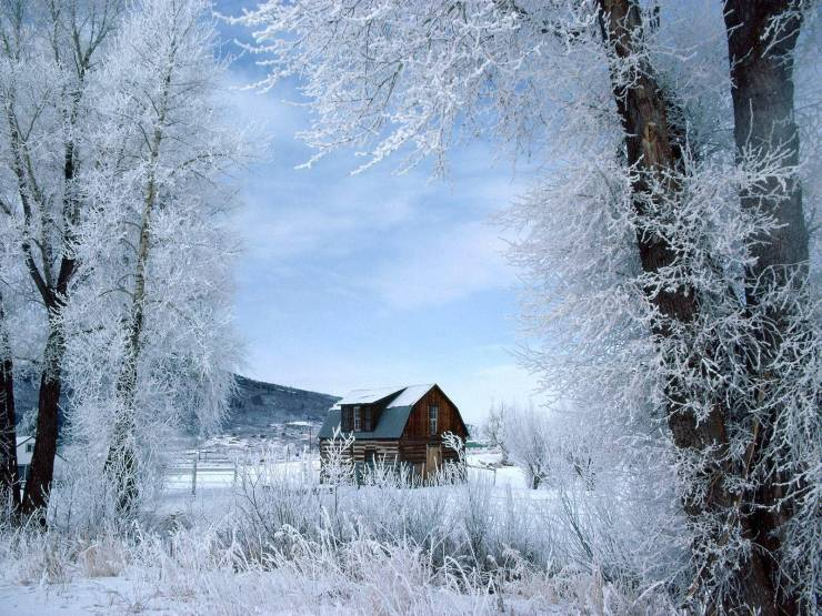 HD Winter wallpaper backgrounds Desktop 1600p