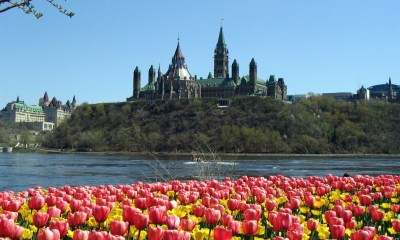 Parliament hill spring season wallpaper windows desktop 1600p