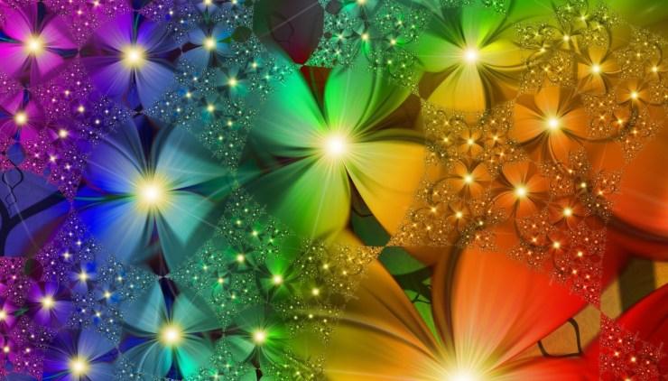 hd flower wallpaper free download