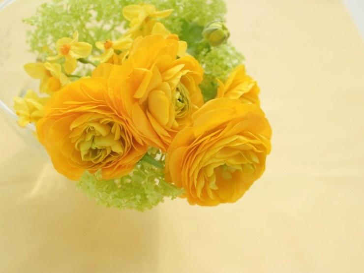 roses flower wallpaper
