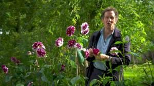 Gardeners World episode 24 2019