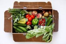 From the Field: Increasing Food Access through CSA