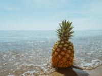 Cute pineapple wallpapers | Pineapple desktop backgrounds