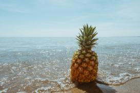pineapple wallpapers photography