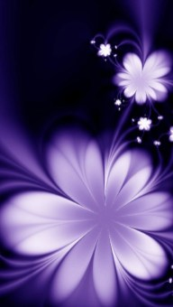 Android flowers hd wallpapers