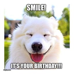 beautiful smile on birthday from cute white dog