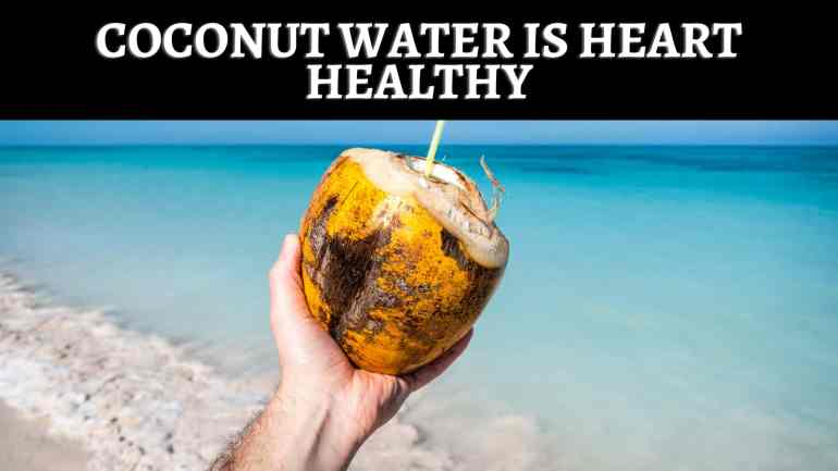 What is King Coconut?