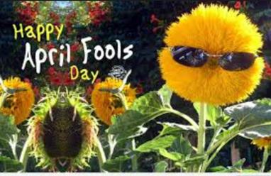 april fool funny image