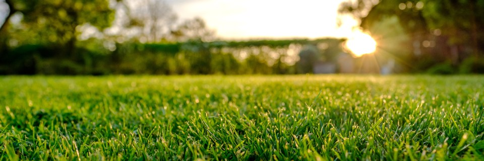 Hd Lawn Landscape Llc Let Us Deal With The Hassle