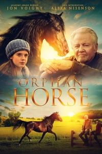 Download Horse Girl Full Movie Hindi 720p