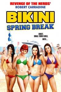 Download Bikini Spring Break Full Movie Hindi 720p