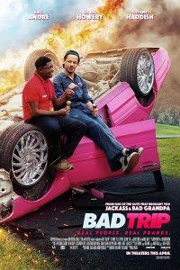 Download Bad Trip Full Movie Hindi 720p