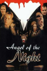 Angel of the Night (1998) Download Dual Audio 480p 720p