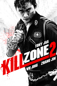 Kill Zone 2 (2015) Full Movie Download Dual Audio (Hindi-Chinese) 720p