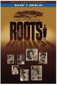 Download Roots Part 2 (2016) Dual Audio 480p 320MB   720p 975MB