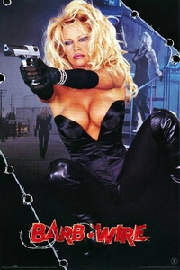 Barb Wire (1996) Full Movie Download (Hindi-English) 480p 720p
