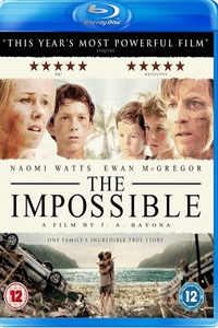 The Impossible (2012) Full Movie Download (Hindi-English) 480p BluRay