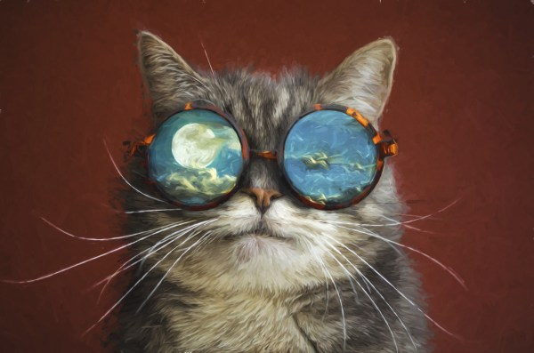 Artistic Cat, HD Animals, 4k Wallpapers, Images ...