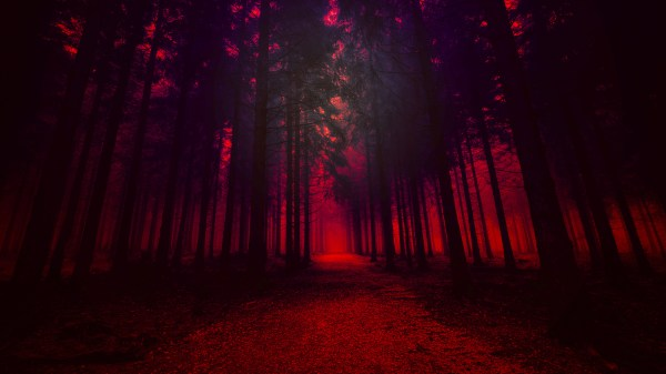 Artistic Red Forest, HD Nature, 4k Wallpapers, Images ...