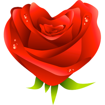 Heart shaped rose emoticon