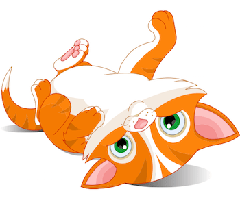 Roll Over Kitty