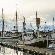 Husavik, Iceland 66º North