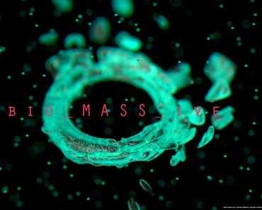 heavy_halo_biomassive